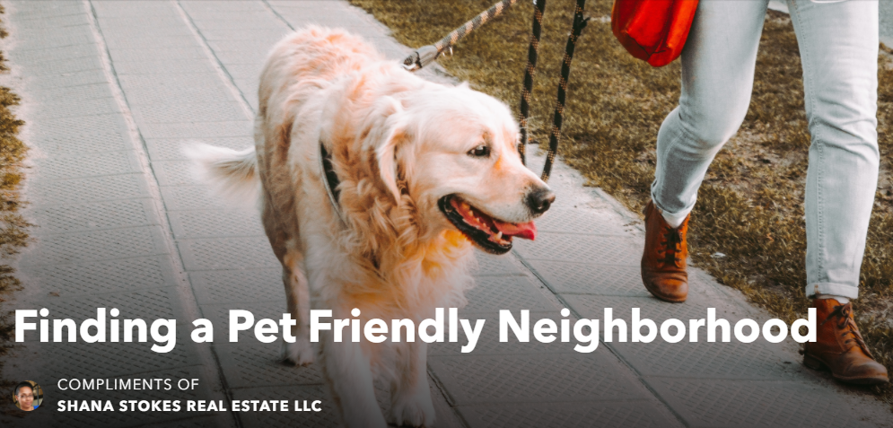 Walking a Dog in the Neighborhood